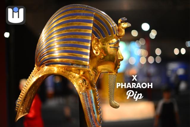 WITISH LOGO PHARAOH PIP BANNER 4