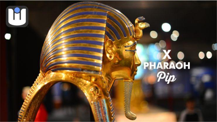 WITISH LOGO PHARAOH PIP BANNER 7